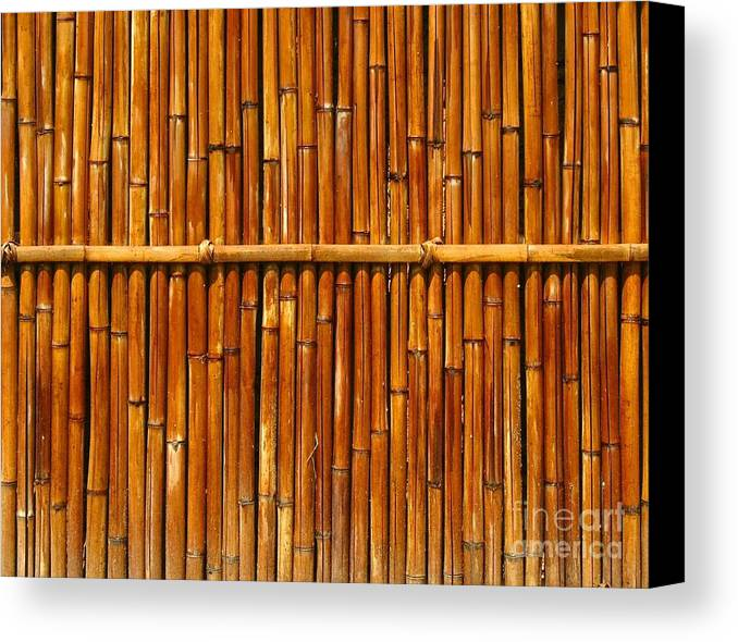 Fence Canvas Print featuring the photograph Bamboo Fence by Yali Shi