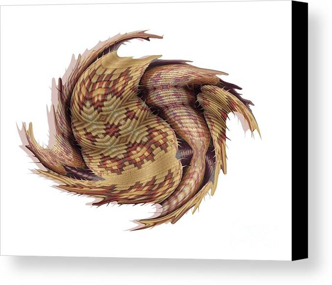 Basket Canvas Print featuring the digital art Basket Entering Black Hole by Ron Bissett