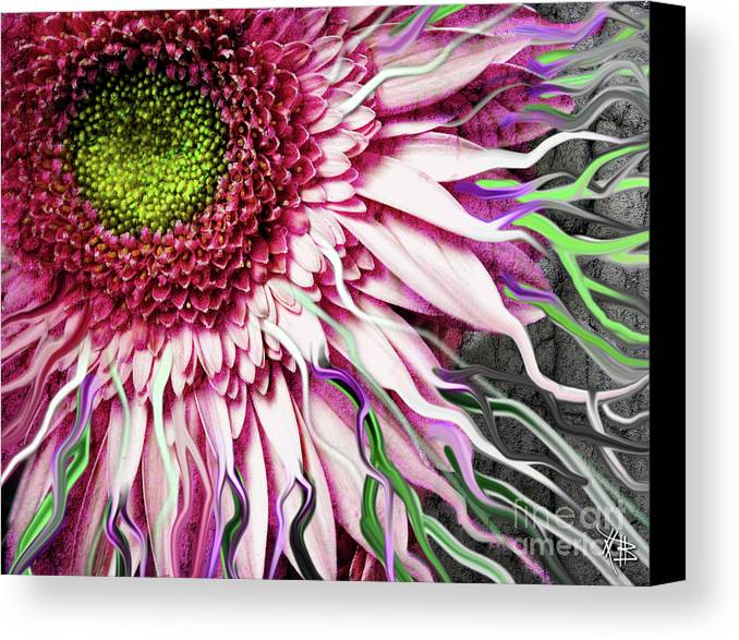 Flower Canvas Print featuring the mixed media Crazy Daisy by Christopher Beikmann