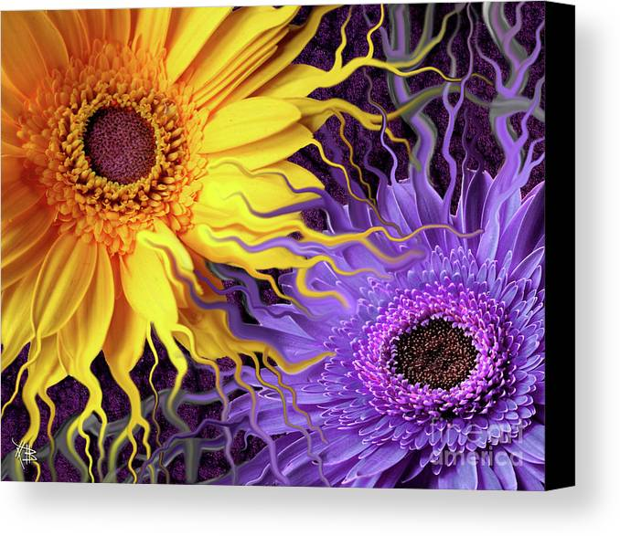 Flowers Canvas Print featuring the painting Daisy Yin Daisy Yang by Christopher Beikmann