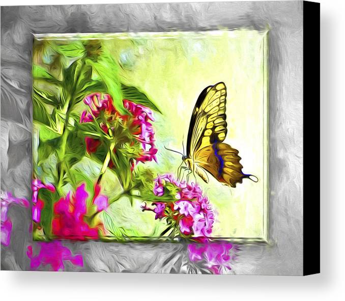 Butterfly Canvas Print featuring the photograph Garden Of Love by Carolyn Marshall