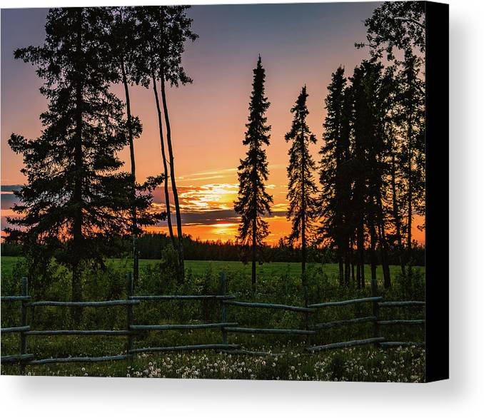 Landscape Canvas Print featuring the photograph Golden Hour by Tami Biorn