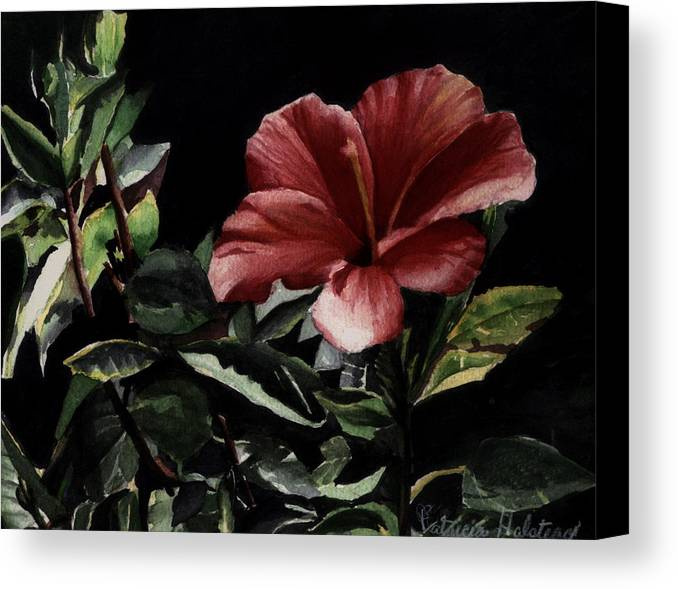 Watercolor Canvas Print featuring the painting Hibiscus by Patricia Halstead
