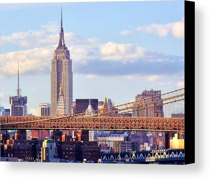 Empire State Building Canvas Print featuring the photograph Inhabited Sculpture by Mitch Cat