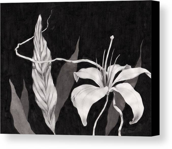 Ink Painting Canvas Print featuring the drawing Lily In The Night by Jennifer McDuffie