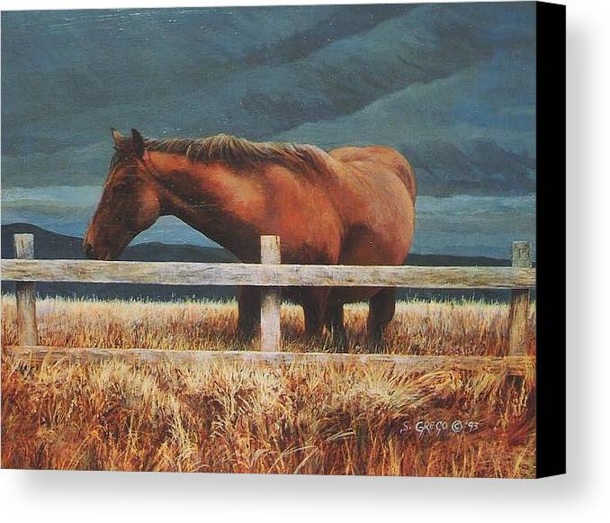 Hores Canvas Print featuring the painting Montana Mare Study by Steve Greco
