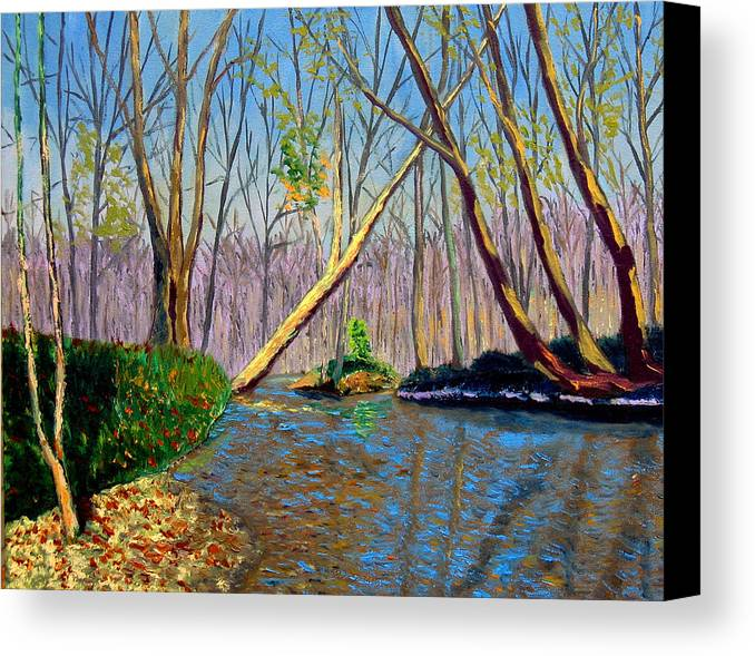 Creek Canvas Print featuring the painting Mooresville November by Stan Hamilton