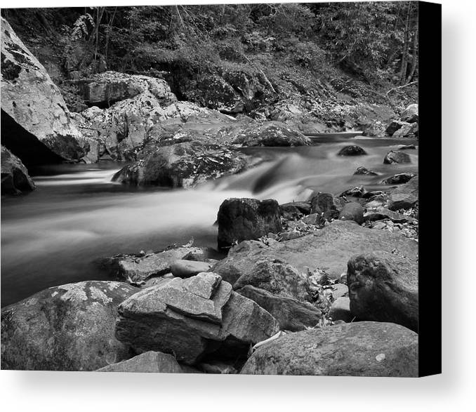 Natural Contrast Black And White Canvas Print featuring the photograph Natural Contrast Black And White by Dan Sproul