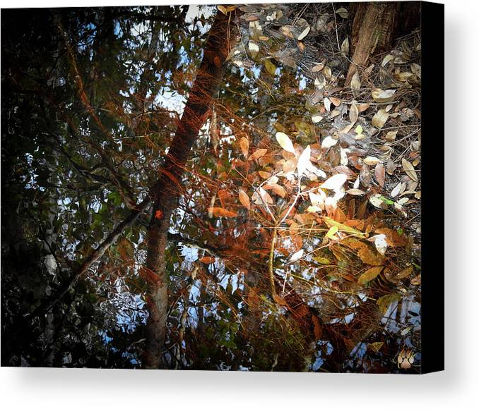 Water Canvas Print featuring the photograph Oh Black Water... by Elie Wolf