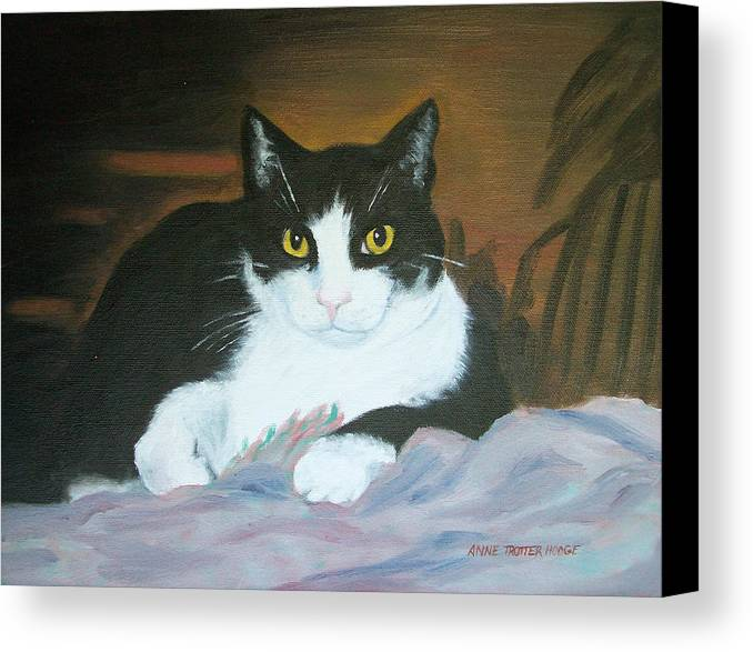Cat Canvas Print featuring the painting Oreo by Anne Trotter Hodge
