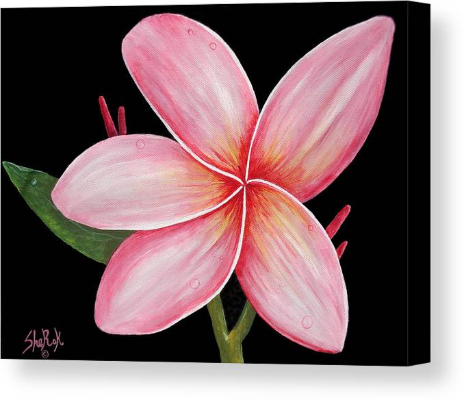 Floral Canvas Print featuring the painting Plumeria by SheRok Williams
