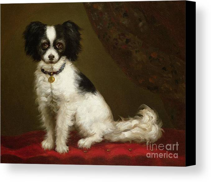 Portrait Of A Spaniel By Anonymous Canvas Print featuring the painting Portrait Of A Spaniel by Anonymous