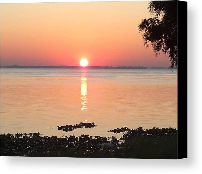 Sunrise-sunset Photographs Canvas Print featuring the photograph Rising Sun by Frederic Kohli