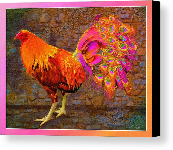 Cross Breed Between A Rooster And A Peacock Canvas Print featuring the painting Rooster Peacock by John Breen