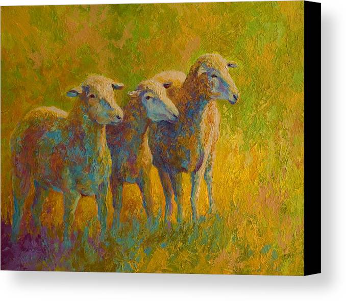 Llama Canvas Print featuring the painting Sheep Trio by Marion Rose