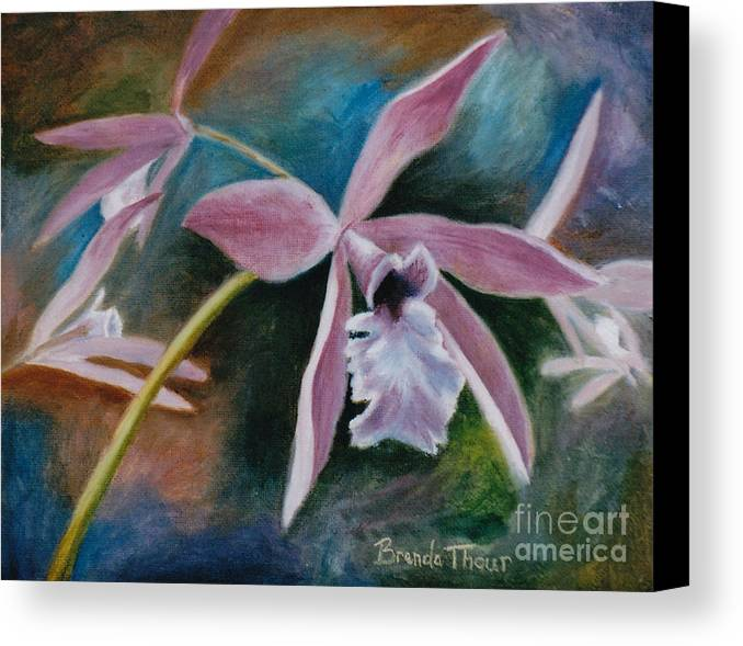 Flower Canvas Print featuring the painting Sweet Orchid by Brenda Thour