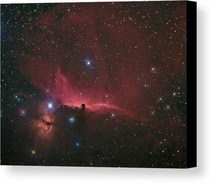Astrophotography Canvas Print featuring the photograph The Horsehead Nebula by Charles Warren