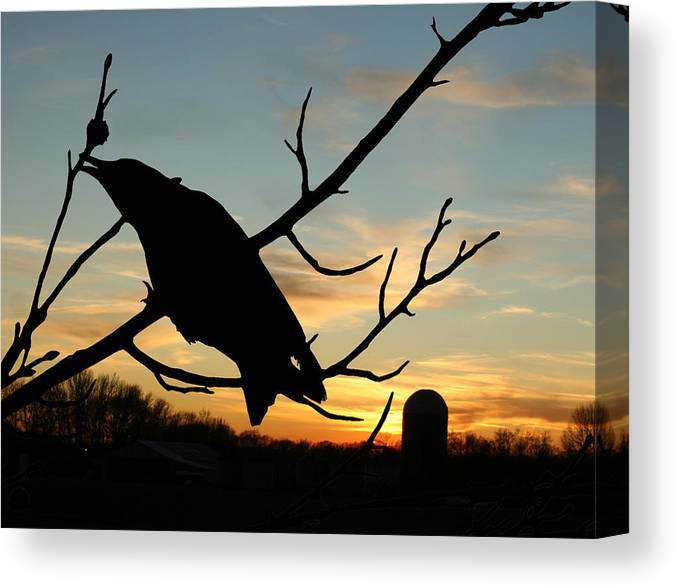 Crow Canvas Print featuring the photograph Cawcaw Over Sunset Silhouette Art by Lesa Fine
