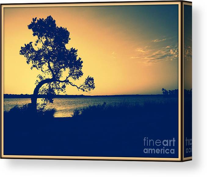 Landscape Canvas Print featuring the photograph Golden Sunset by Mickey Harkins