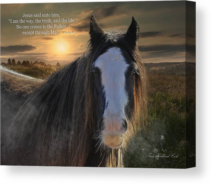 Equine Canvas Print featuring the photograph The Cold Morning Dew With Verse by Terry Kirkland Cook