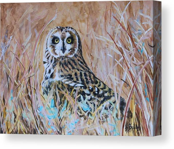 Owl Short-eared Owl Prairie Grass Wildlife Nature Canvas Print featuring the painting Short-eared Owl by Karen Layne