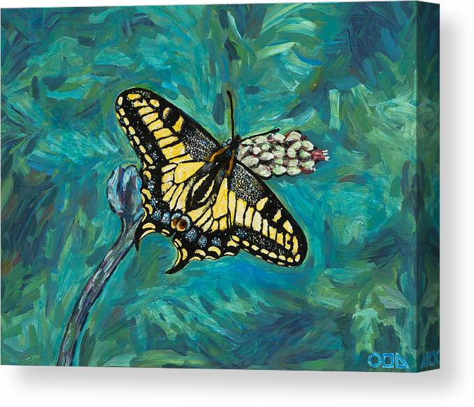 Canvas Print featuring the painting Anise Swallowtail by Steve Lawton