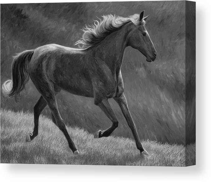 Horse Canvas Print featuring the painting Free - Black And White by Lucie Bilodeau