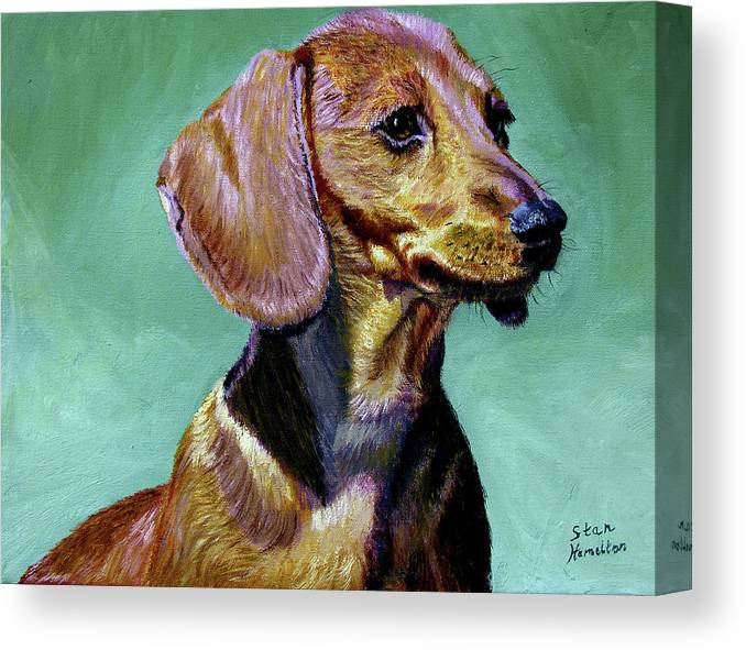 Daschund Canvas Print featuring the painting My Daschund by Stan Hamilton