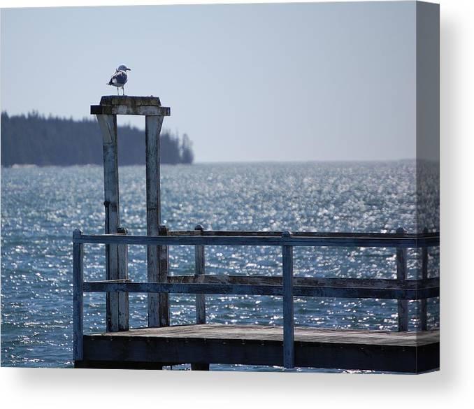 Seascape Canvas Print featuring the photograph Sentinel by Dale R Preston