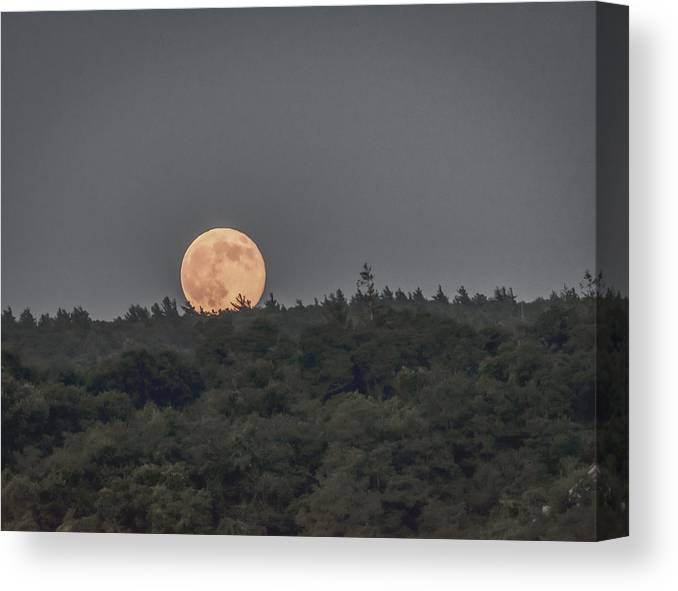 Black Brook Shop Canvas Print featuring the photograph Supermoon Rising by Black Brook Photography