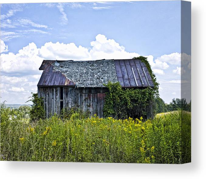 Landscape Canvas Print featuring the photograph Weatthered Barn by Pat Carosone