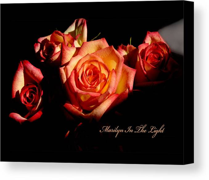 Canvas Print featuring the photograph Marilyn Light by Richard Gordon