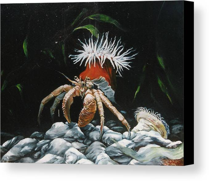 Wildlife Canvas Print featuring the painting Moonlight Tidalpool by Steve Greco