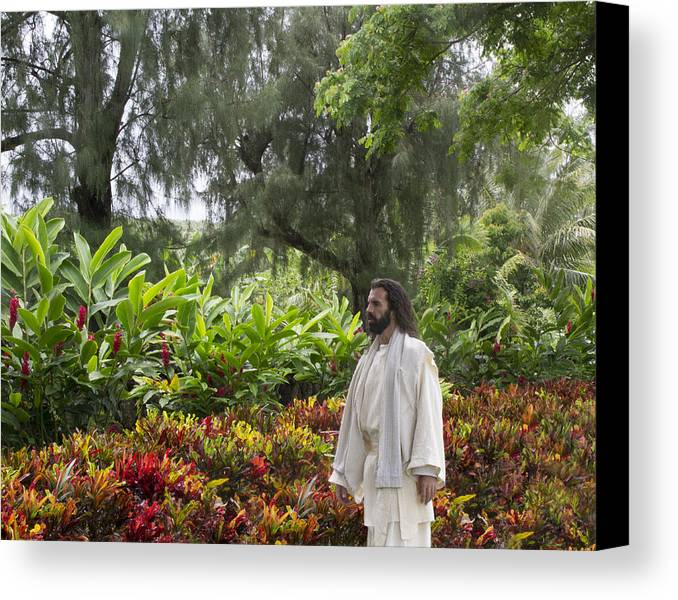 Jesus Canvas Print featuring the photograph Adam Where Art Thou? by Lois Colton