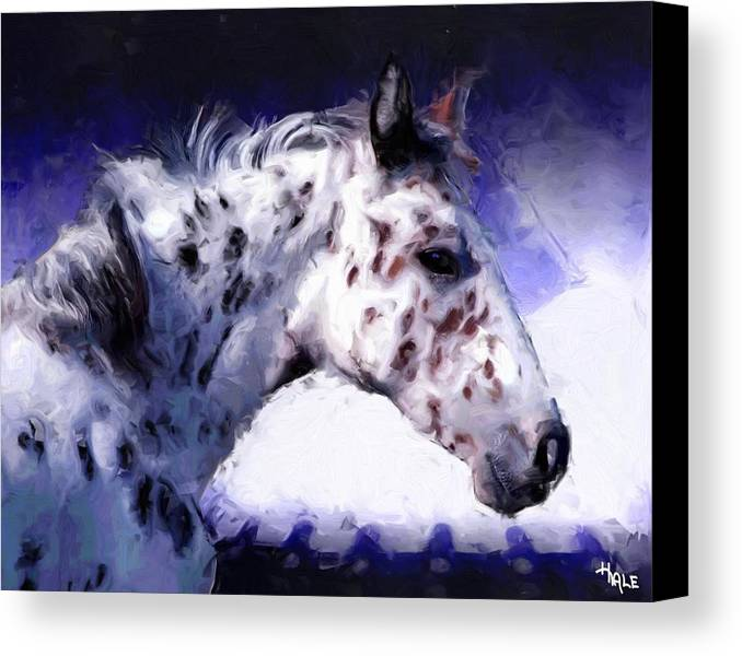 Southwest Canvas Print featuring the painting Appaloosa Pony by Roger D Hale