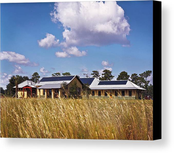 Disney Wilderness Preserve Canvas Print featuring the photograph Disney Wilderness Preserve by Rich Franco