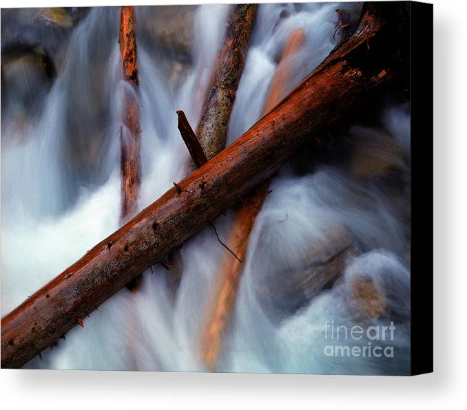 Beauty Creek Canvas Print featuring the photograph Jasper - Beauty Creek Logs by Terry Elniski