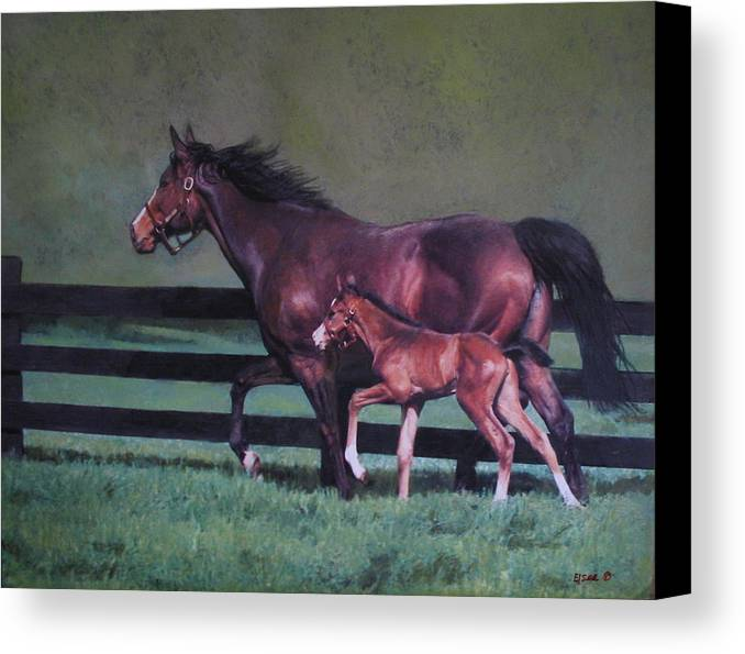 Equine Horse Foal Mare Canvas Print featuring the painting The First Outting by Linda Elsea