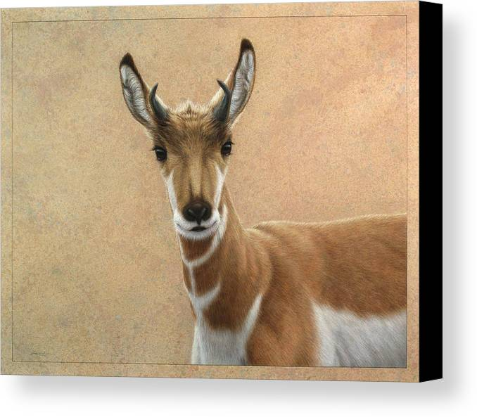 Cute Canvas Print featuring the painting Young Pronghorn by James W Johnson