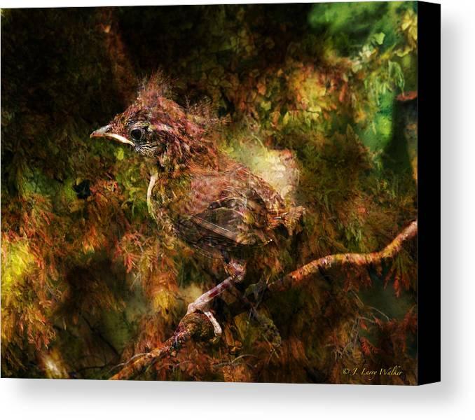 J Larry Walker Canvas Print featuring the digital art Baby Wren First Fly by J Larry Walker