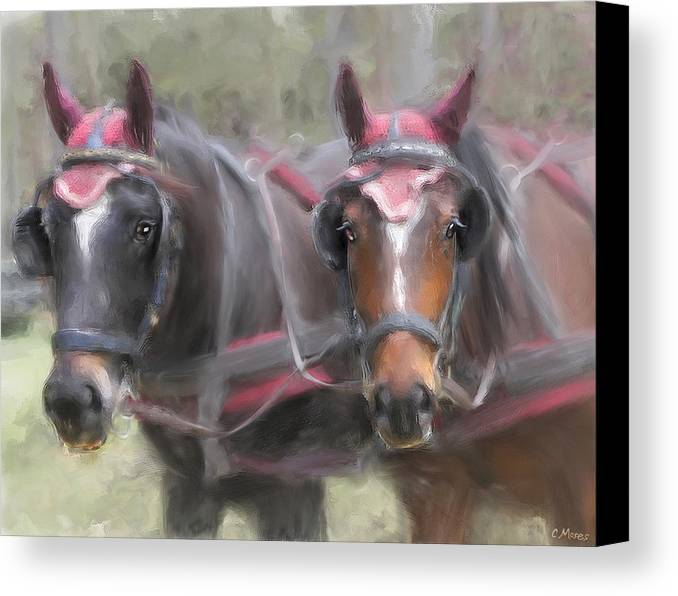 Horse Canvas Print featuring the painting Carriage Horses Pleasure Pair by Connie Moses