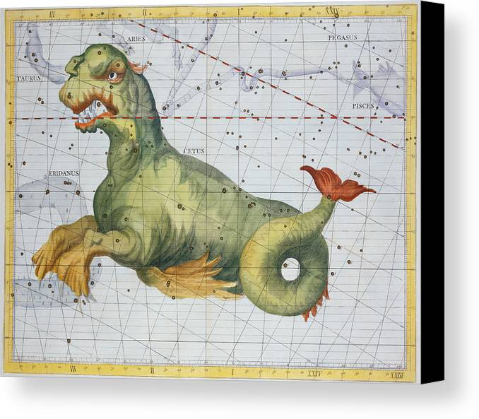 Constellation Of Cetus The Whale Canvas Print featuring the drawing Constellation Of Cetus The Whale by James Thornhill