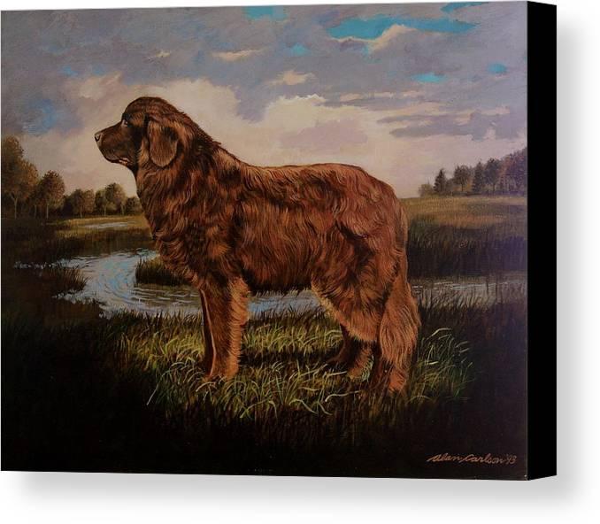 Newfoundland Water Dog Life Saving . Canvas Print featuring the painting Beautiful Bear-like Friend. by Alan Carlson