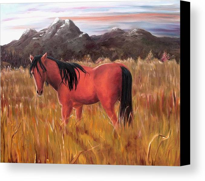 Horses Artwork Canvas Print featuring the painting A Horse Of Course by Diane Daigle