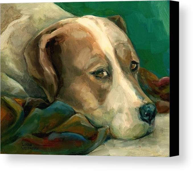 Dog Canvas Print featuring the painting A Watchful Eye by Linda Vespasian