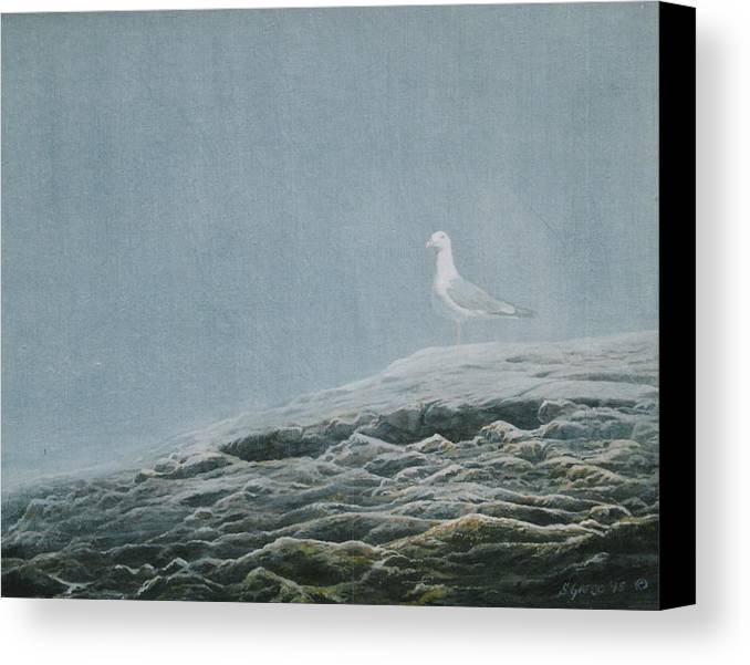 Wildlife Canvas Print featuring the painting Aura At Odiorne by Steve Greco