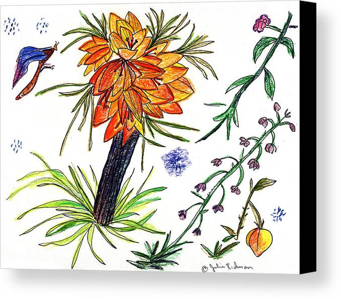 Drawing Nature Botany Flowers Abstract Art Canvas Print featuring the painting Botanical Flower With Insect. by Julie Richman