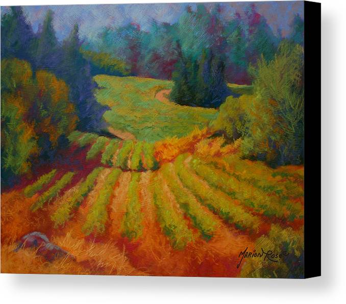 Pastel Canvas Print featuring the painting Columbia Valley Vineyard by Marion Rose