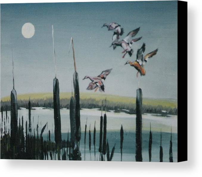 Wildfowl Canvas Print featuring the painting Commin In by Barry Smith