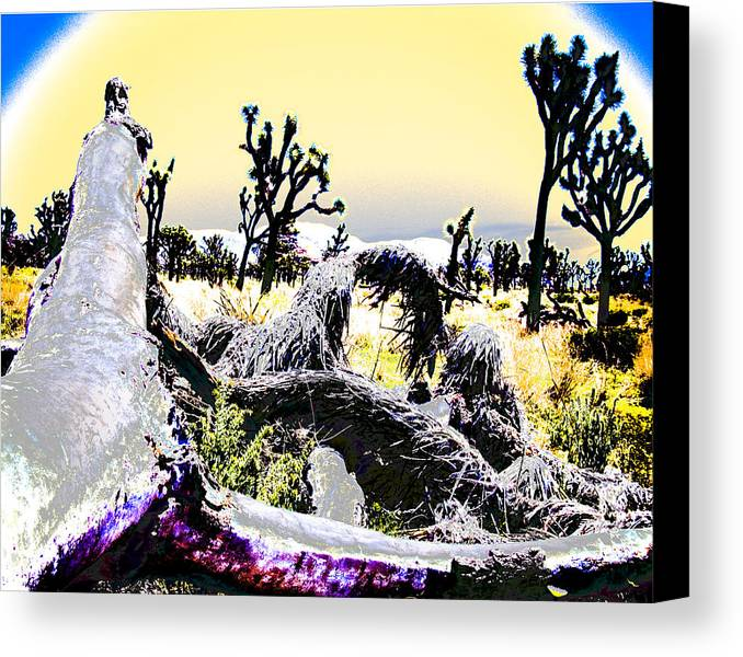 Desert Canvas Print featuring the photograph Desert Landscape - Joshua Tree National Monment by Ann Tracy